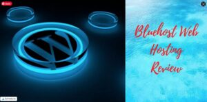 Bluehost's Pricing Plans & Review - Wordpress Logo