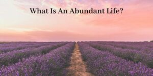 What Is An Abundant Life - Graphic